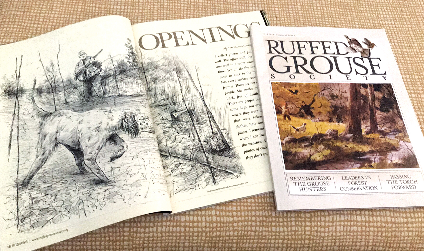 Ruffed Grouse Society (RGS / Fall 2018) is a very classy, very respected publication throughout the country, and I was thrilled to find out I had some artwork in it. Better yet, to open it up and see it's a full spread, accompanying a great author such as Ted Lundrigan!