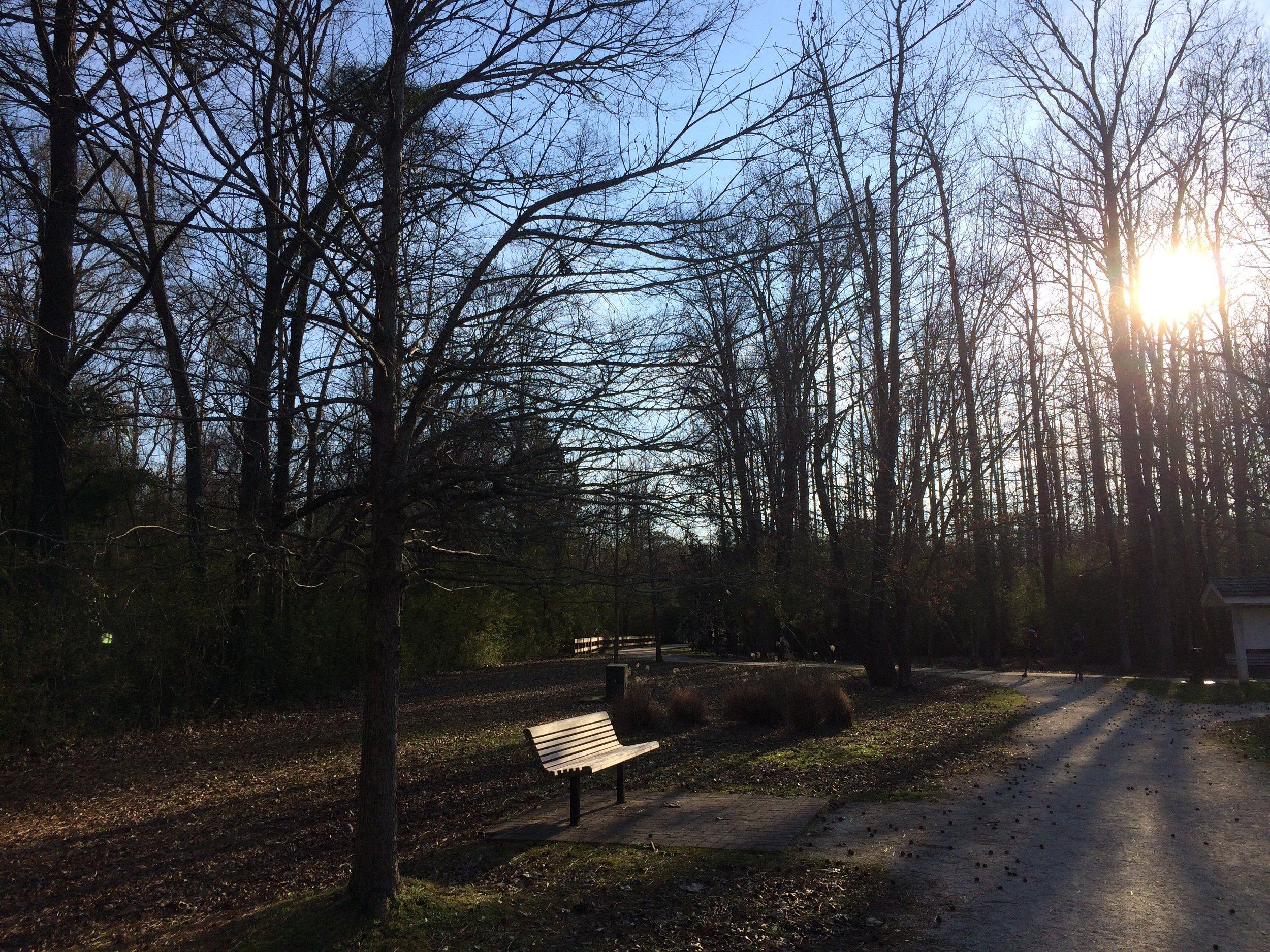 Late afternoon walk at Town Creek Park in Auburn