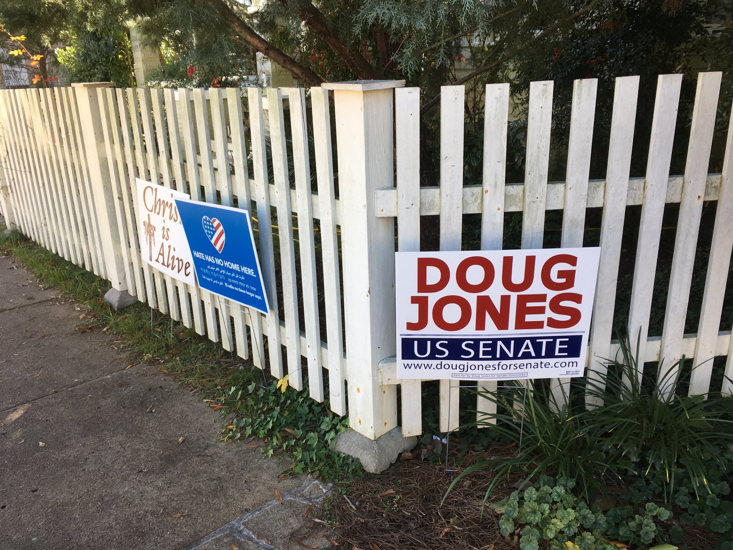 As election day approached, I saw more and more Doug Jones lawn signs on my walks around town.