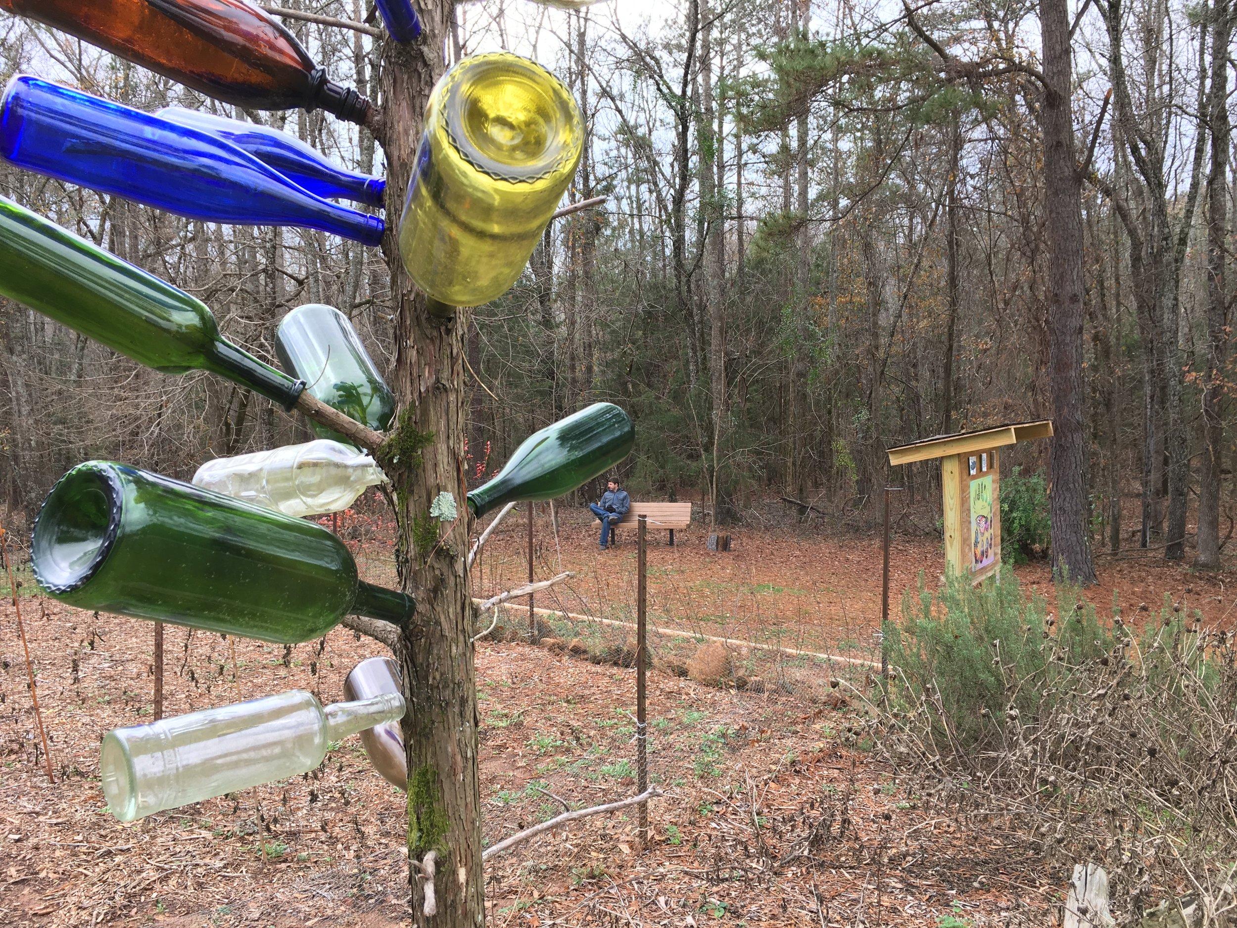 Walk at Louise Kreher Forest Ecology Preserve, Auburn University