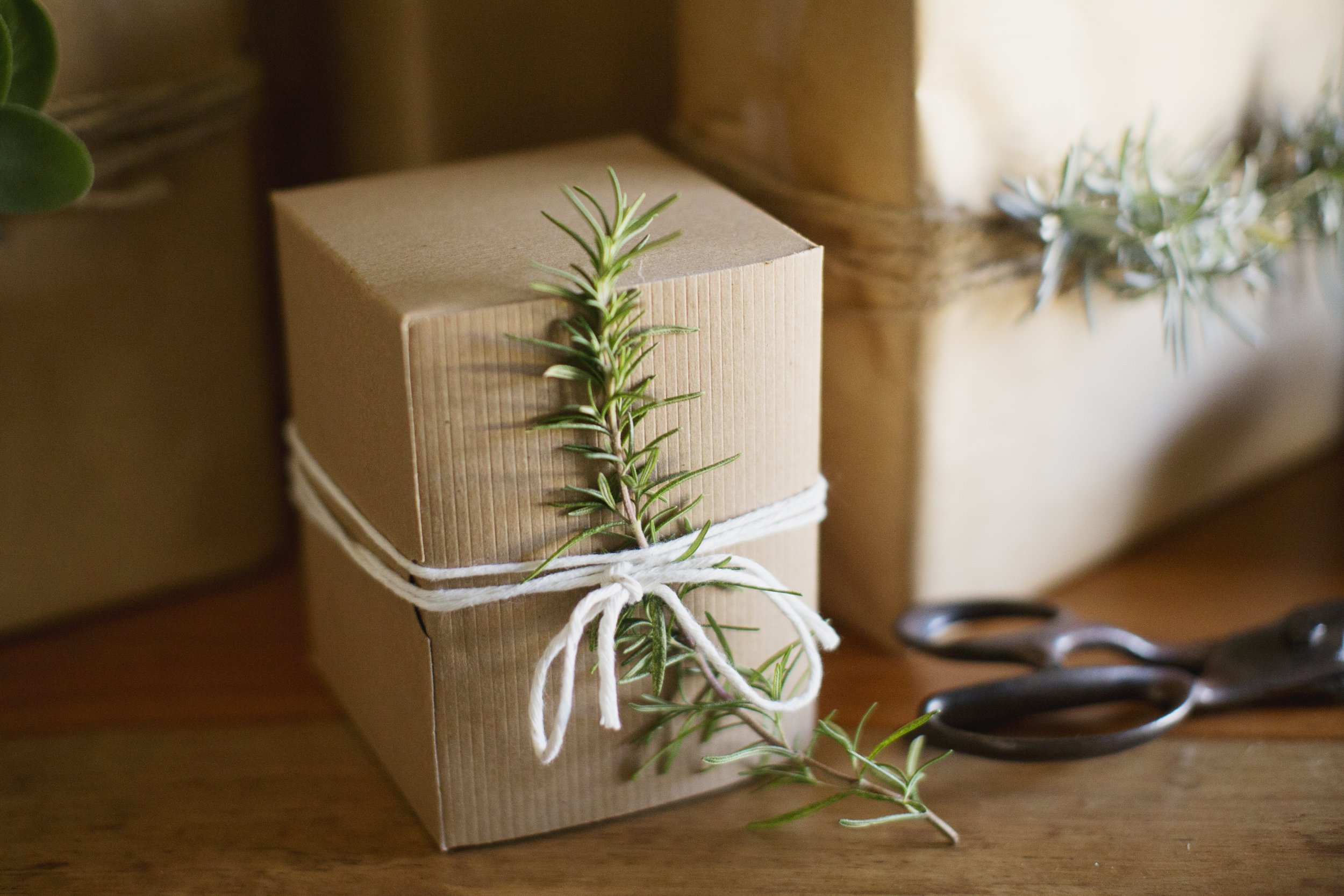 rosemary sprig holiday wrapping
