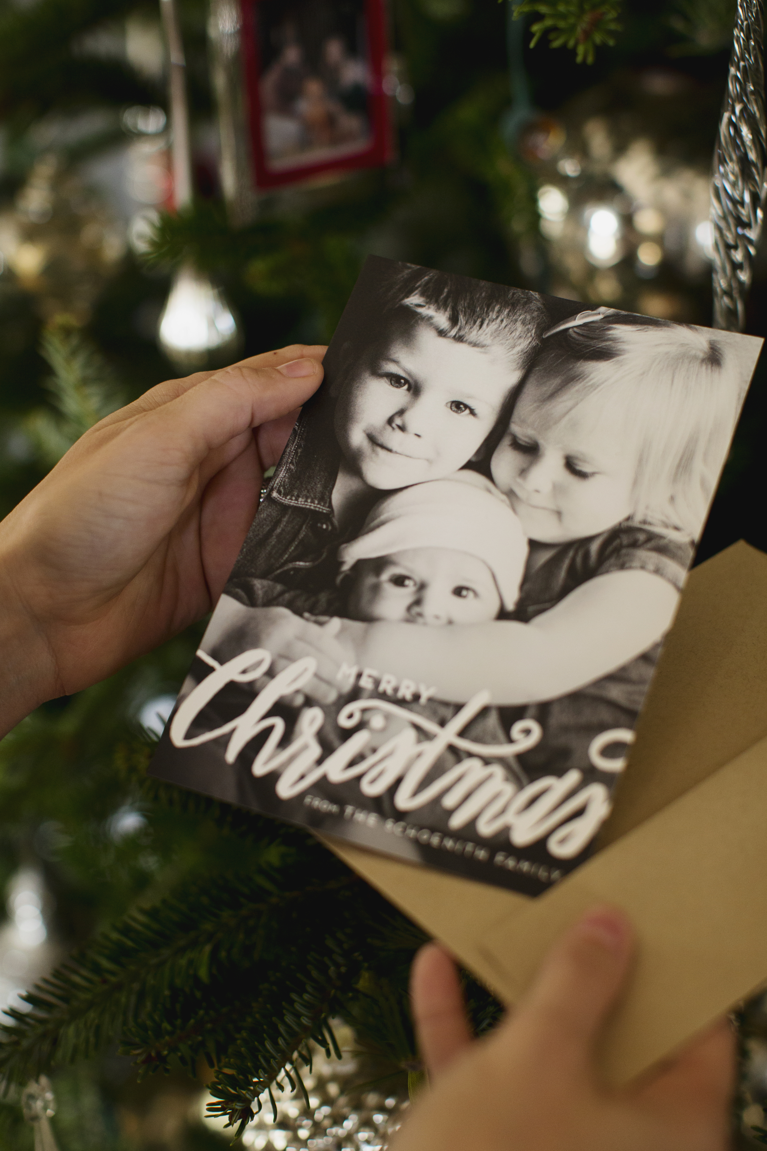 minted holiday cards family photo