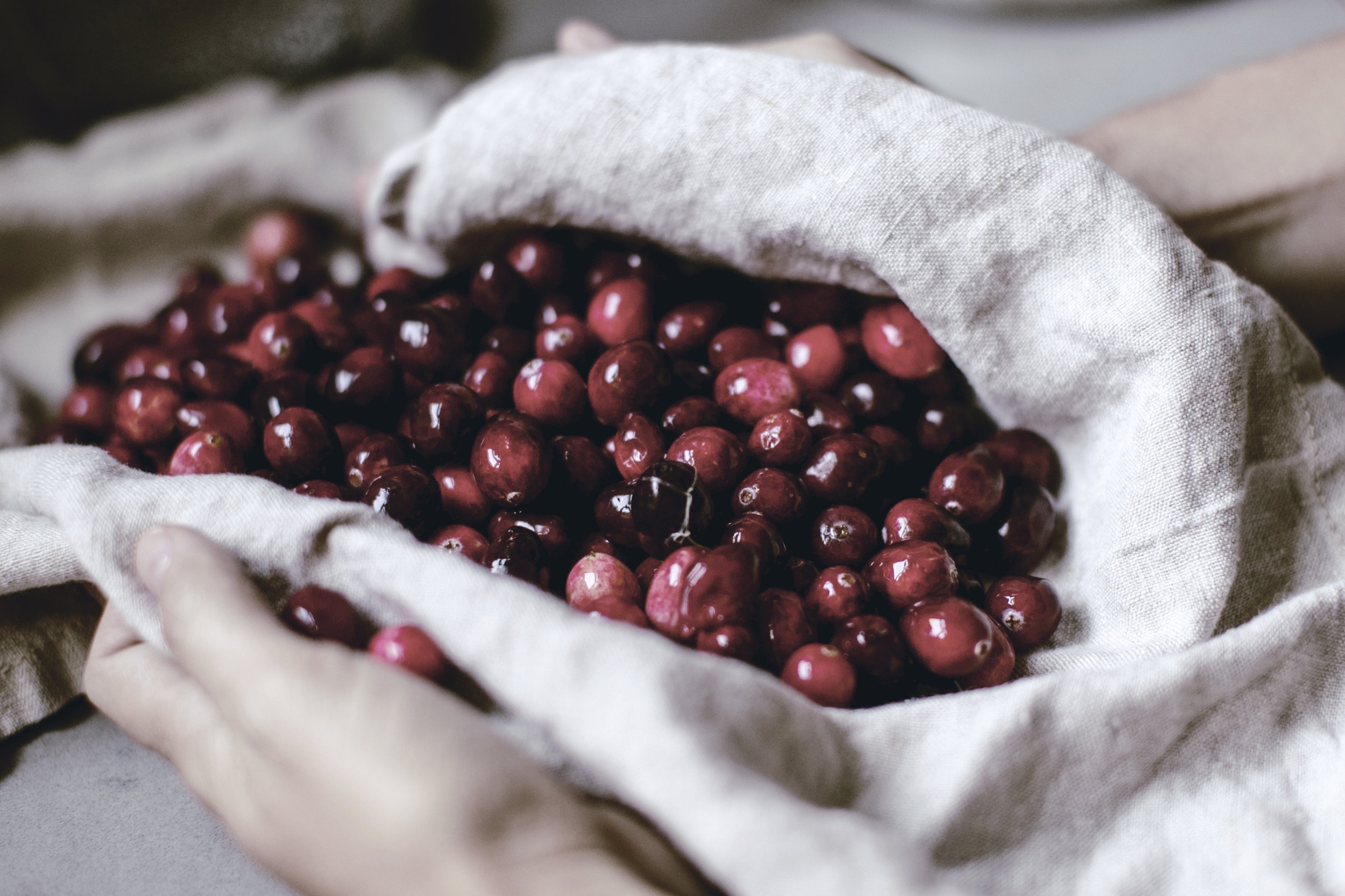 Fresh holiday cranberries