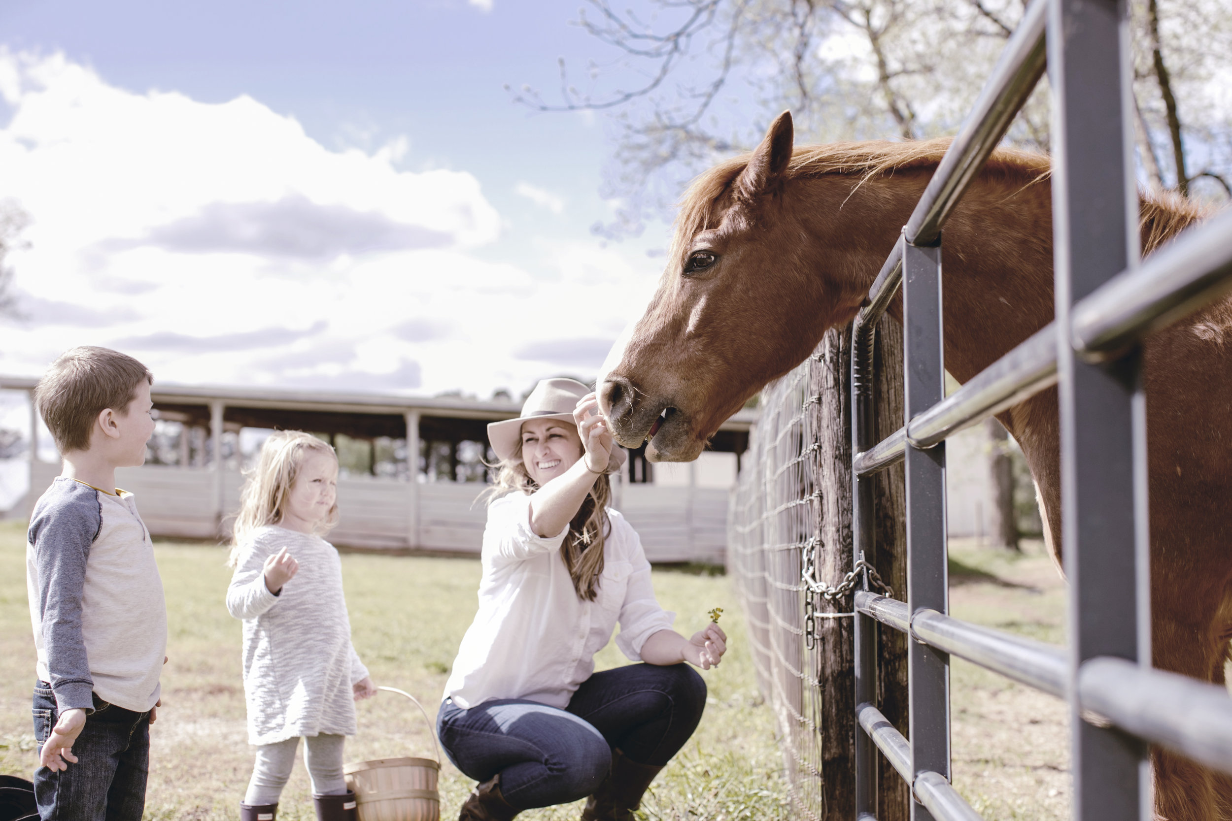 feeding the horses at the farm with the kids / heirloomed