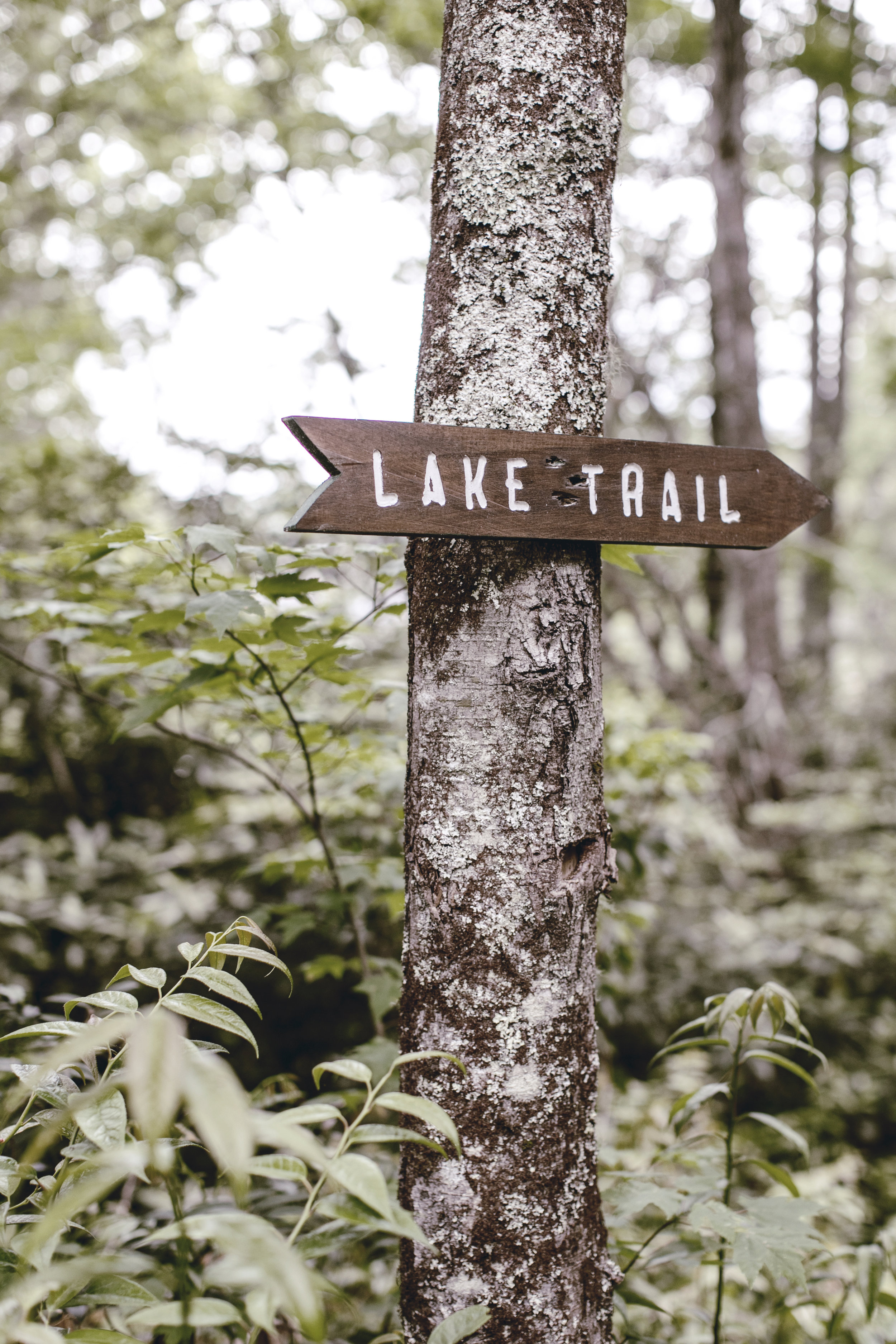 lake trail rustic hiking sign / heirloomed