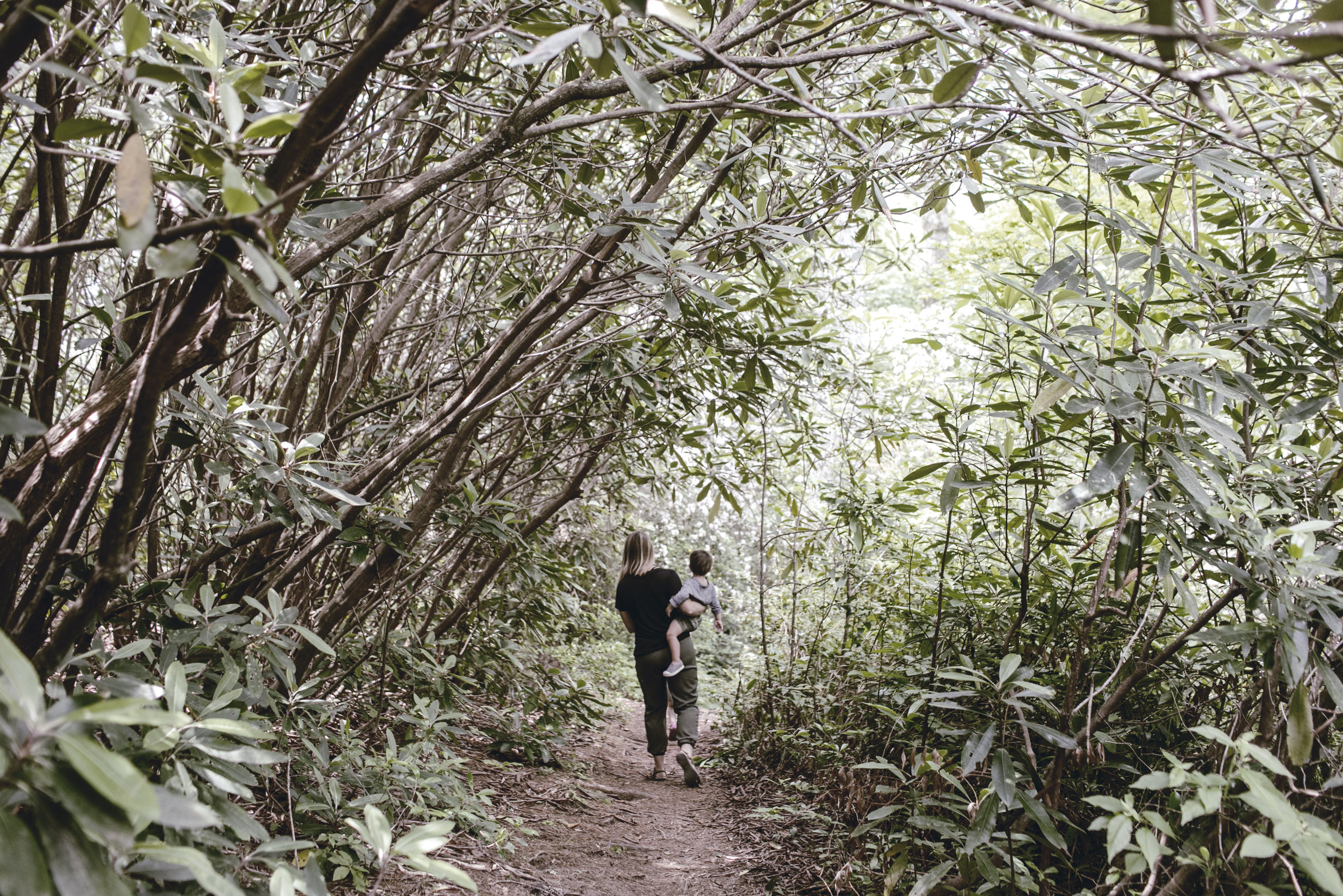 family hike on the trail / heirloomed