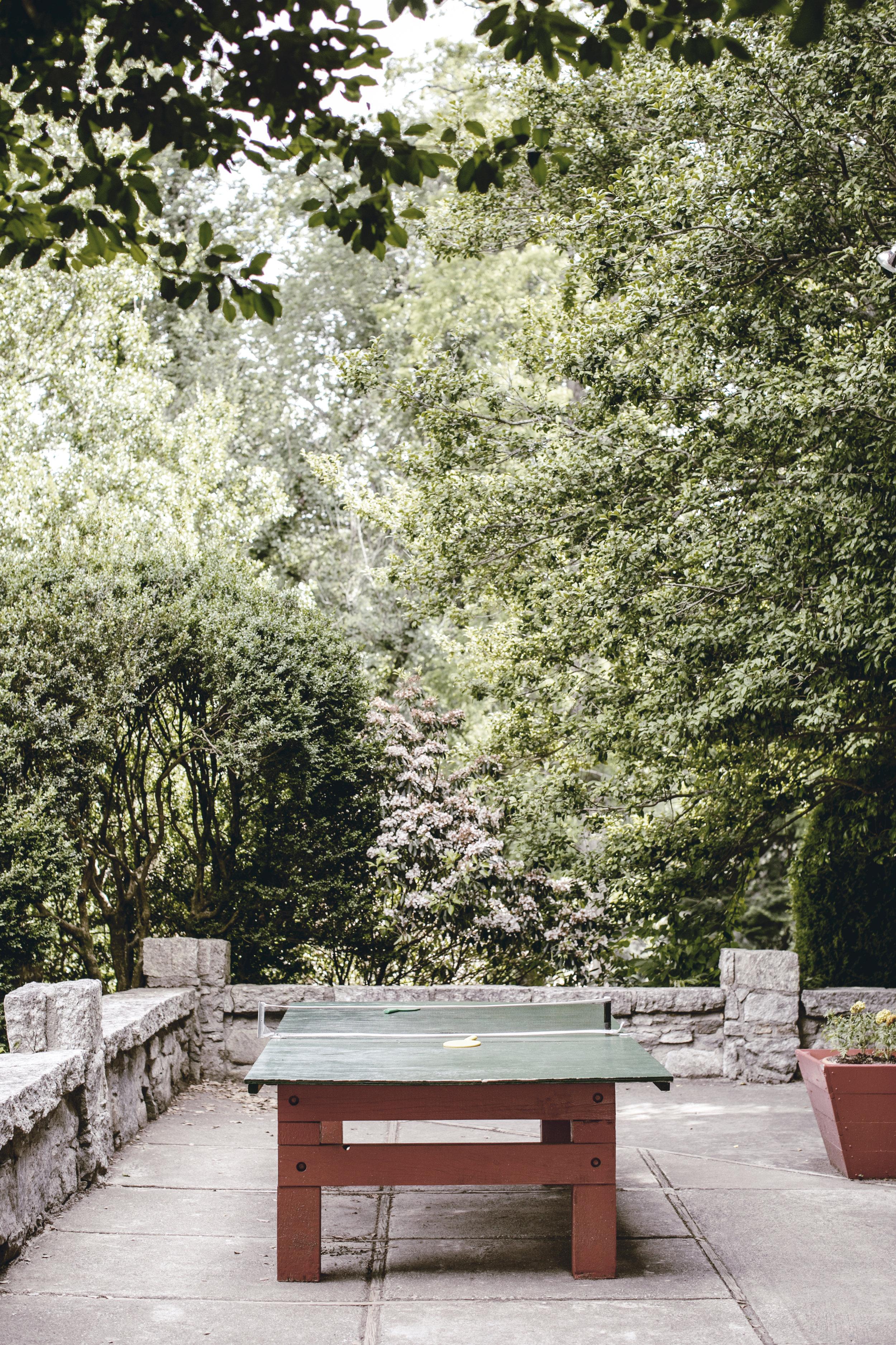 outdoor table tennis / heirloomed