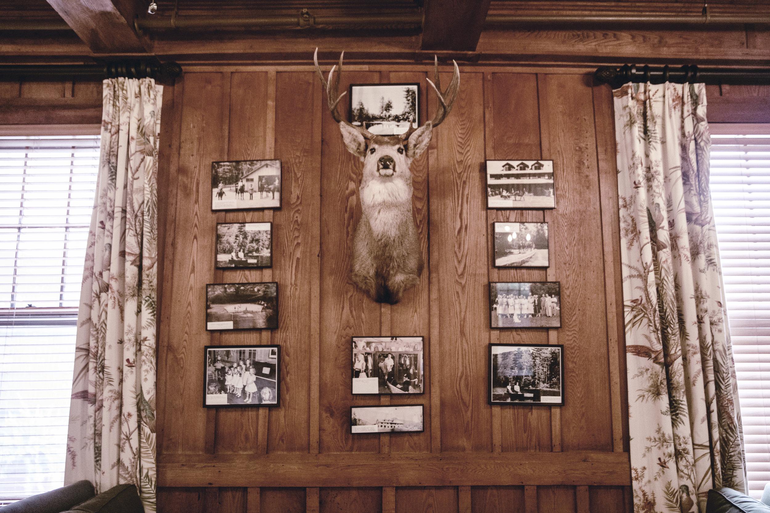 rustic lodge wall display / heirloomed