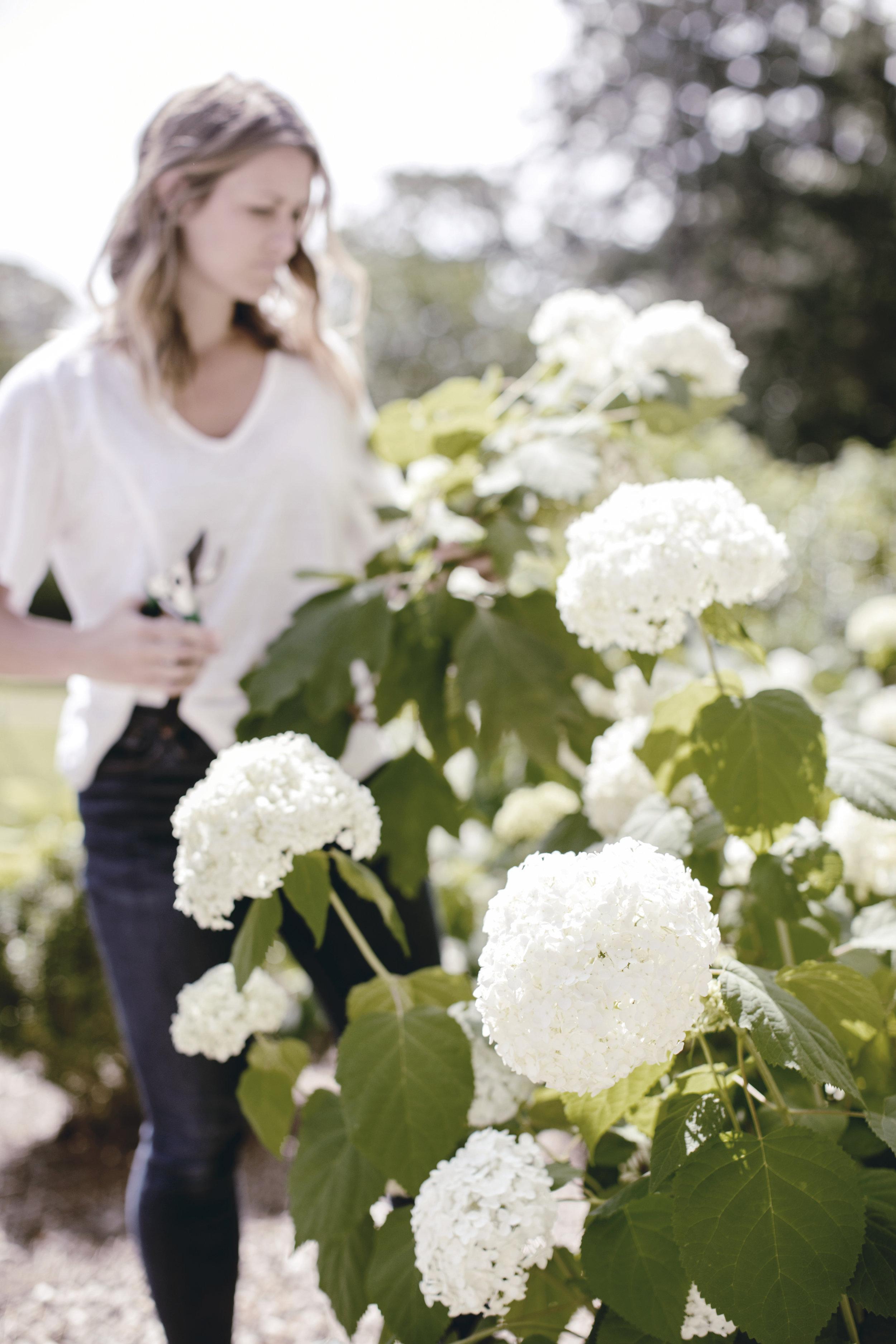 how to create a farmhouse garden / heirloomed