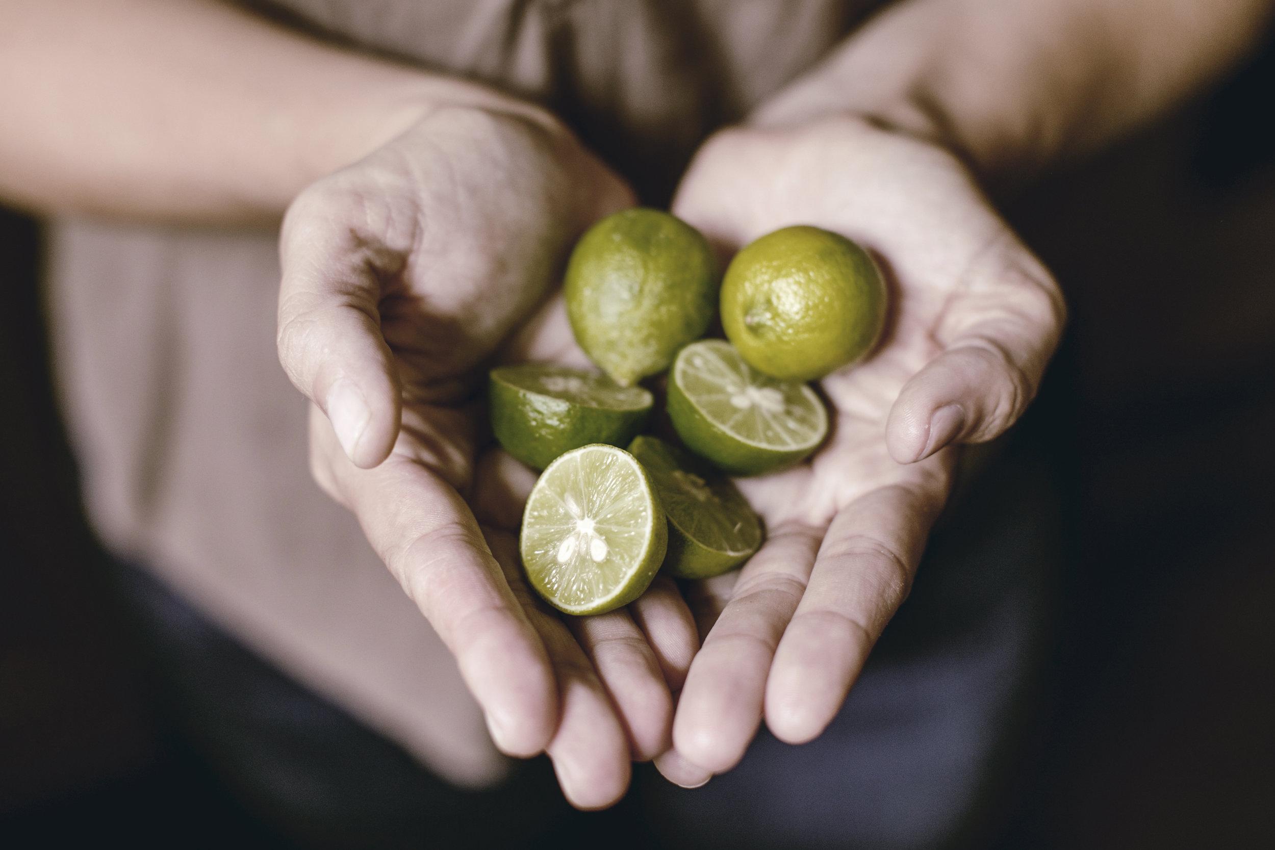 handful of fresh key limes / heirloomed