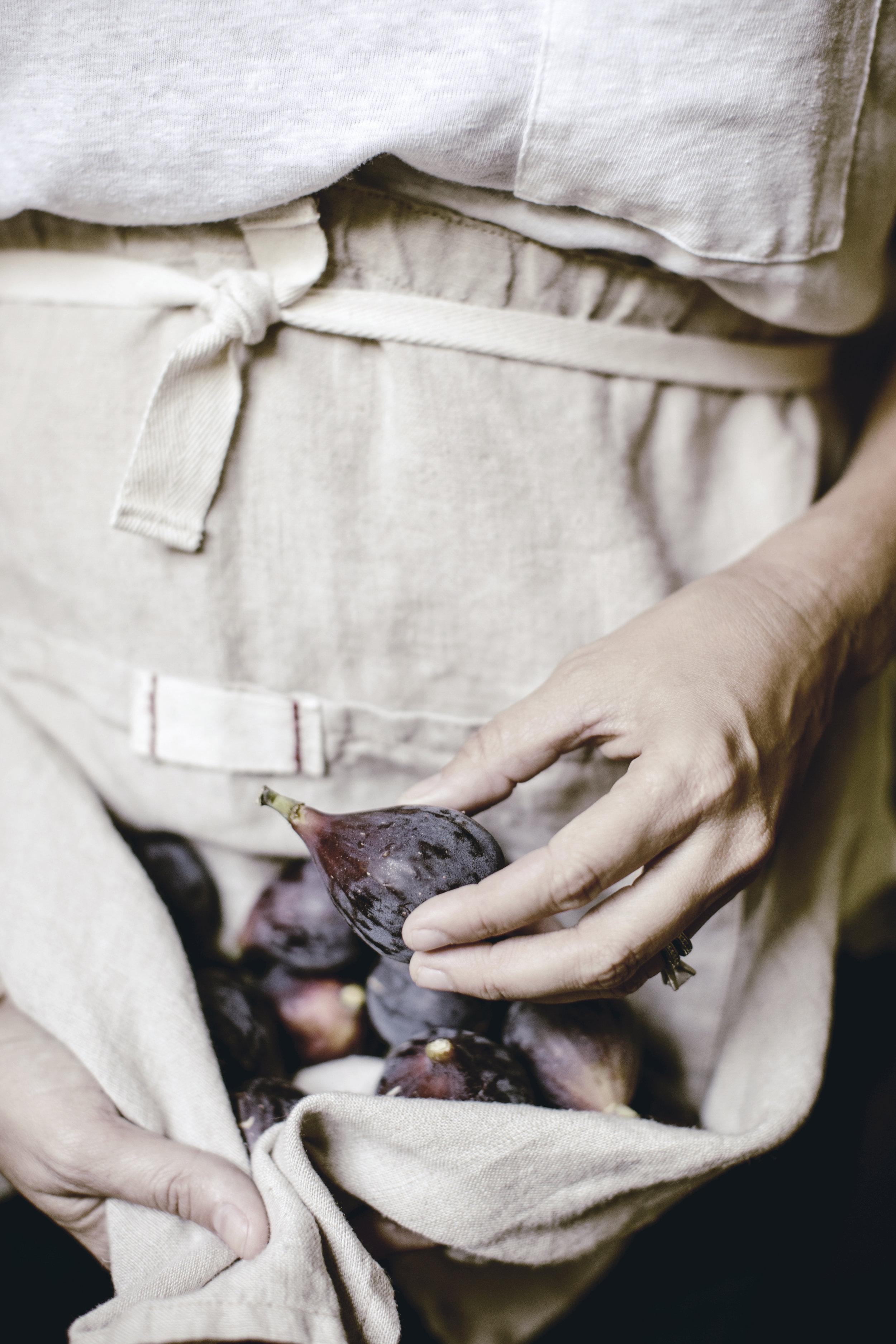oatmeal linen apron harvesting fresh figs for jam / heirloomed