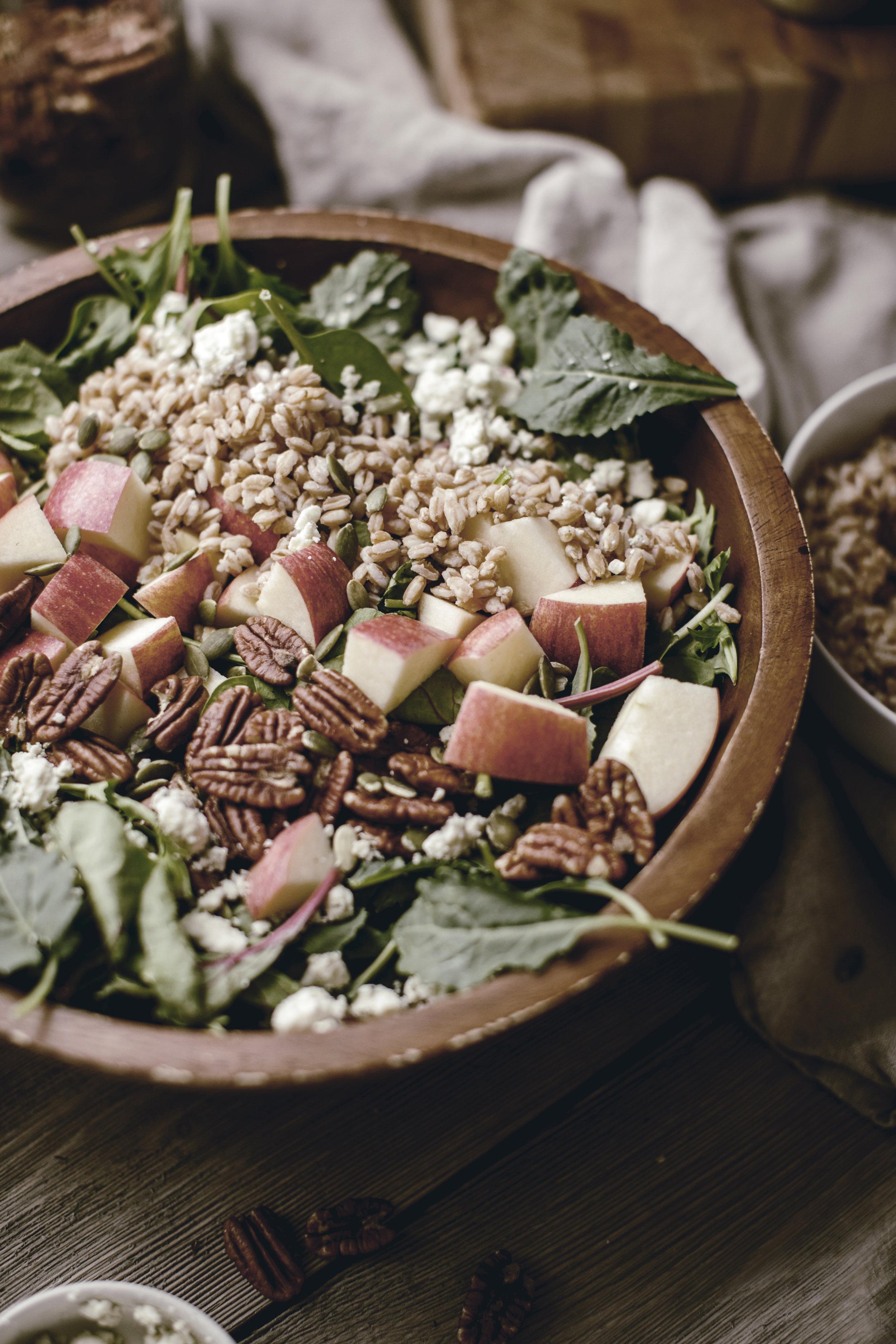 harvest apple salad with farrow / heirloomed
