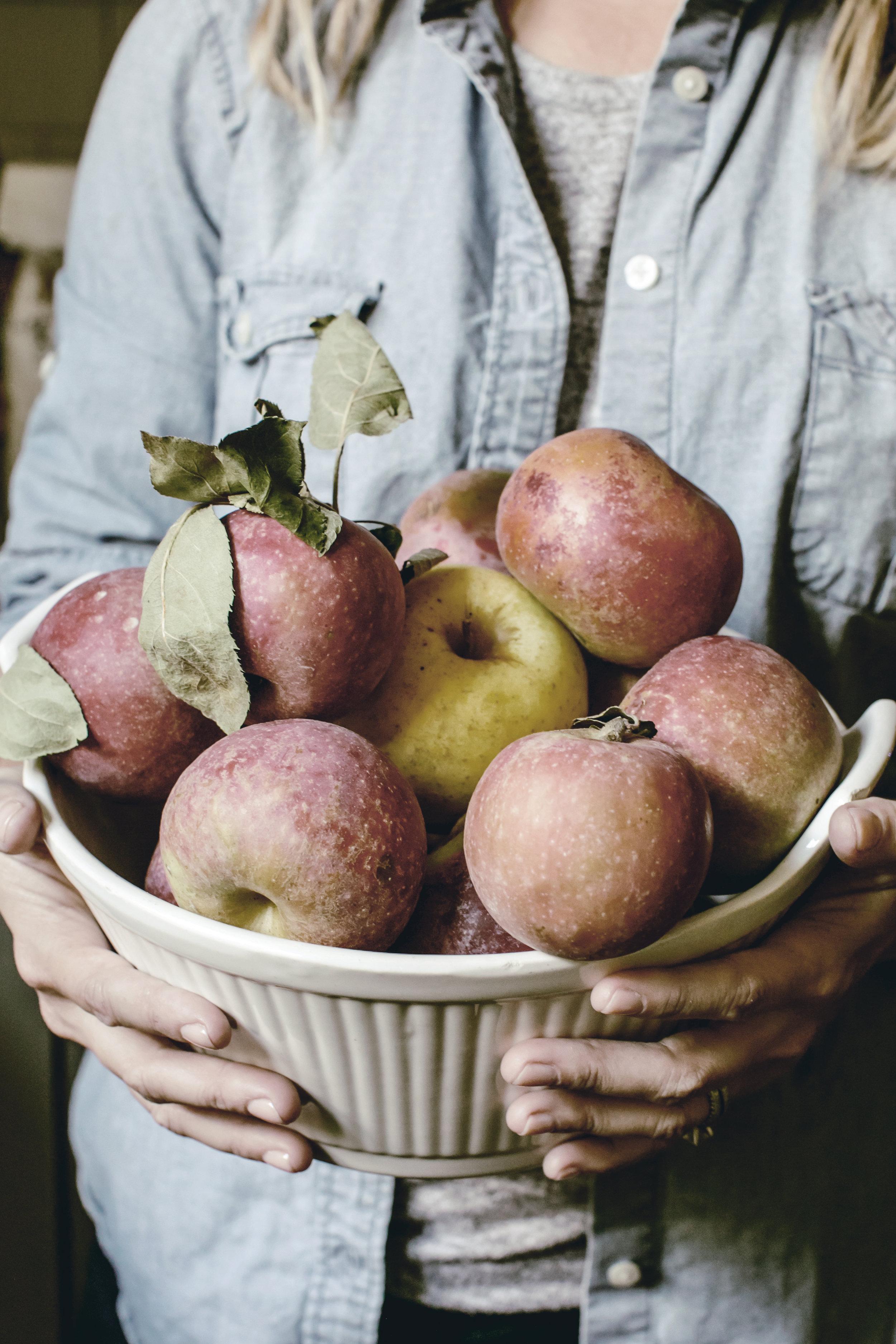 apple picking / heirloomed