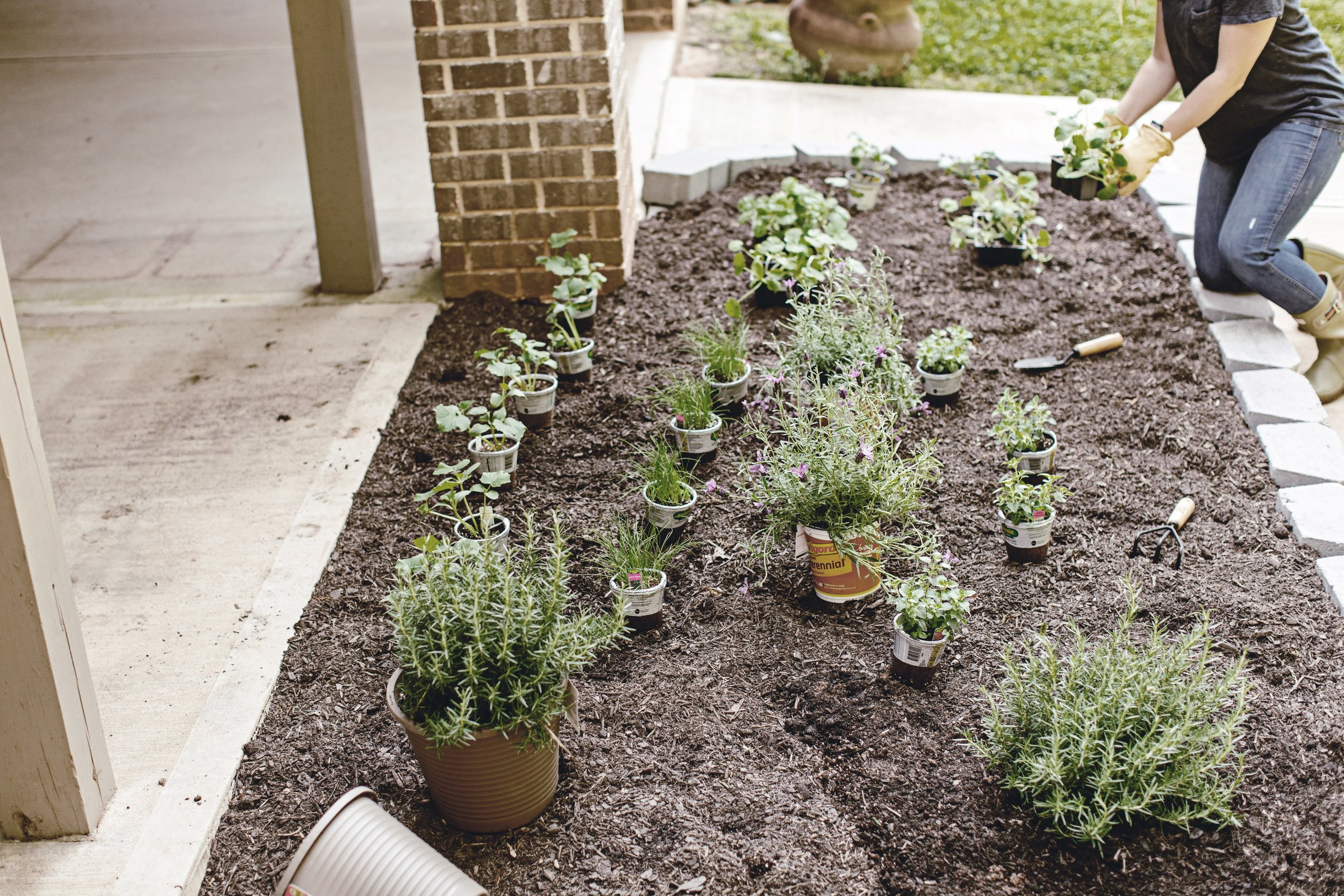 planning a farmhouse garden / heirloomed
