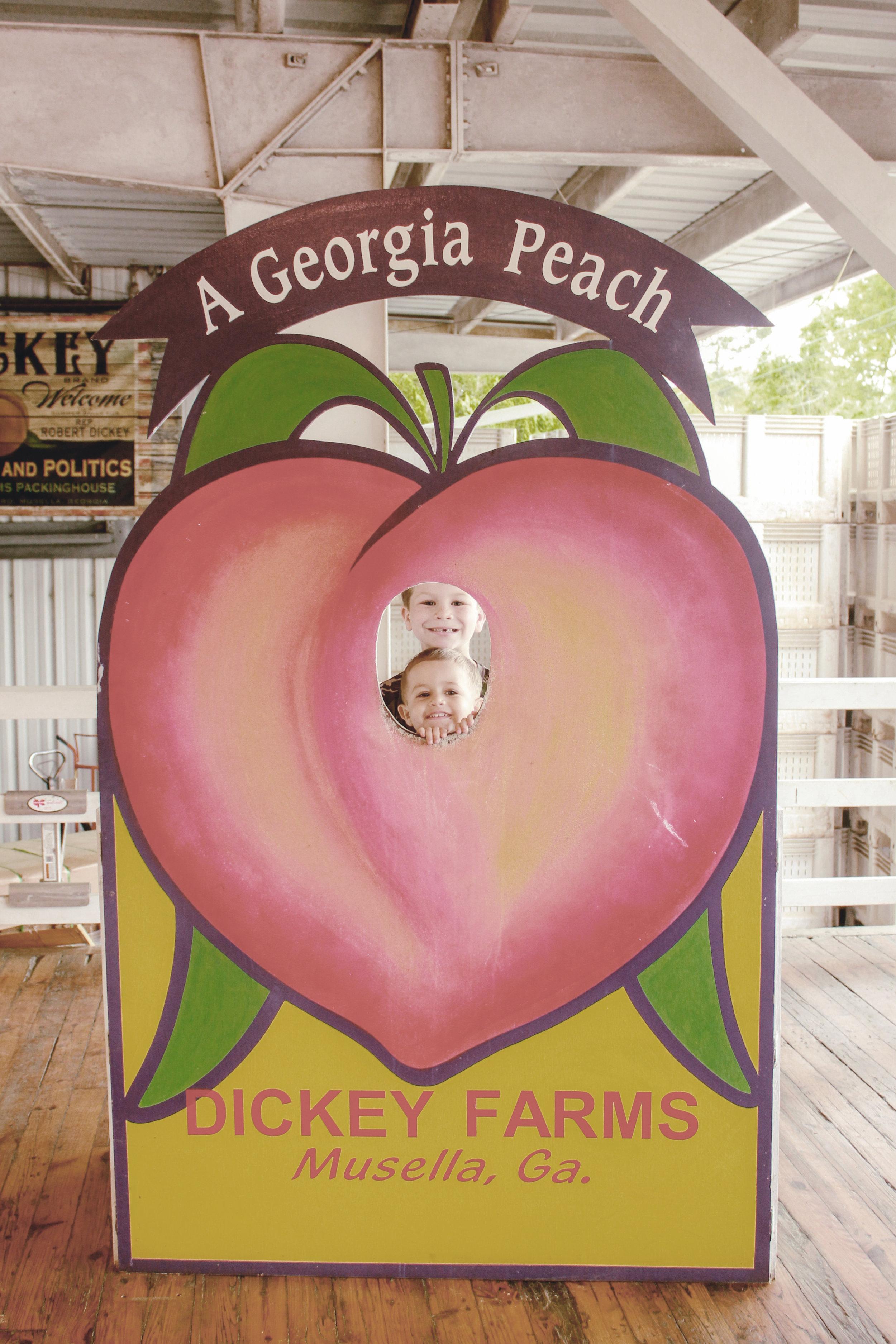 dickey farms peach grower / musella ga / heirloomed travel