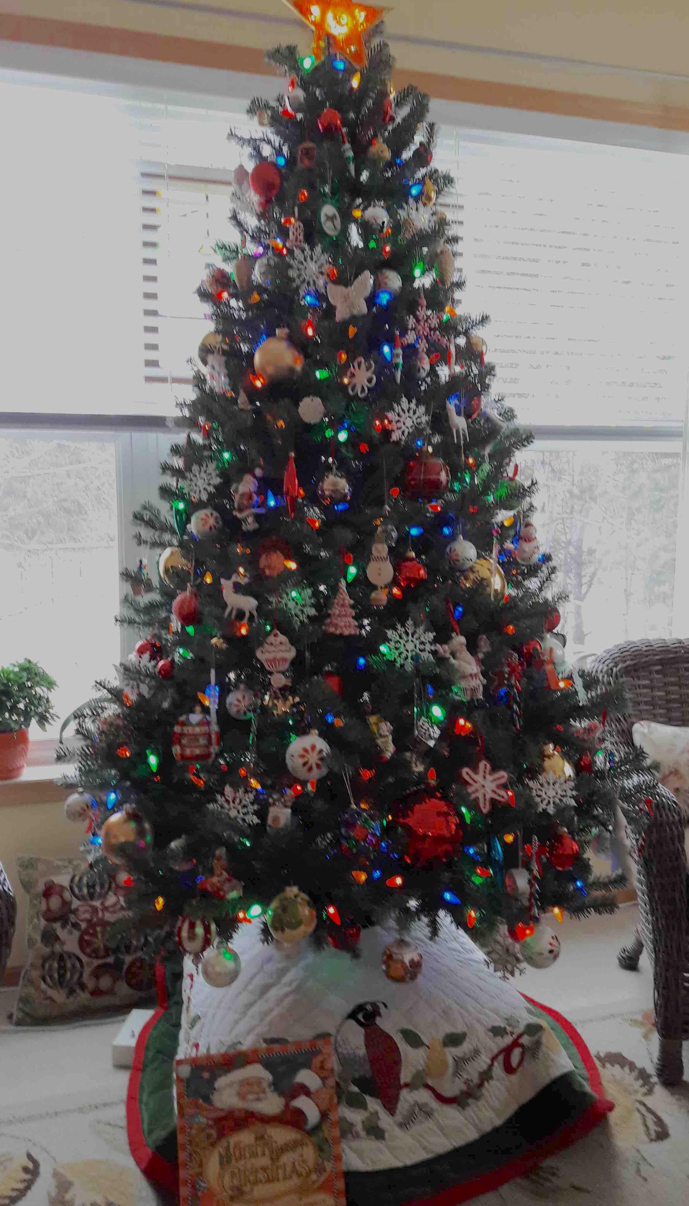 Tree 2018-11-28 09.58.47 copy.jpg