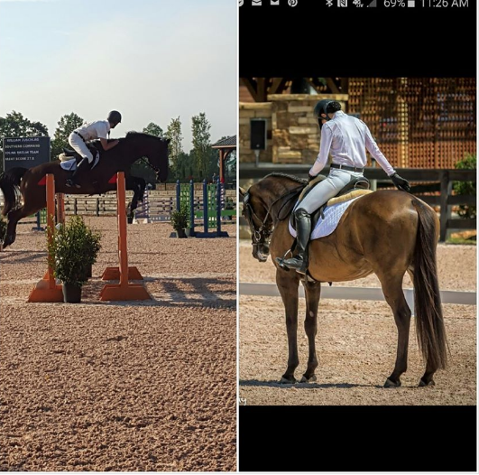 Renovatio Farms would like to congratulate Will and Rebecca on their stellar wins and the USPC National Championships. Will took home the individual and team first in the Preliminary division and Rebecca the individual high scoring Musical Kur 80.5% and 2nd place Team score. Well done!