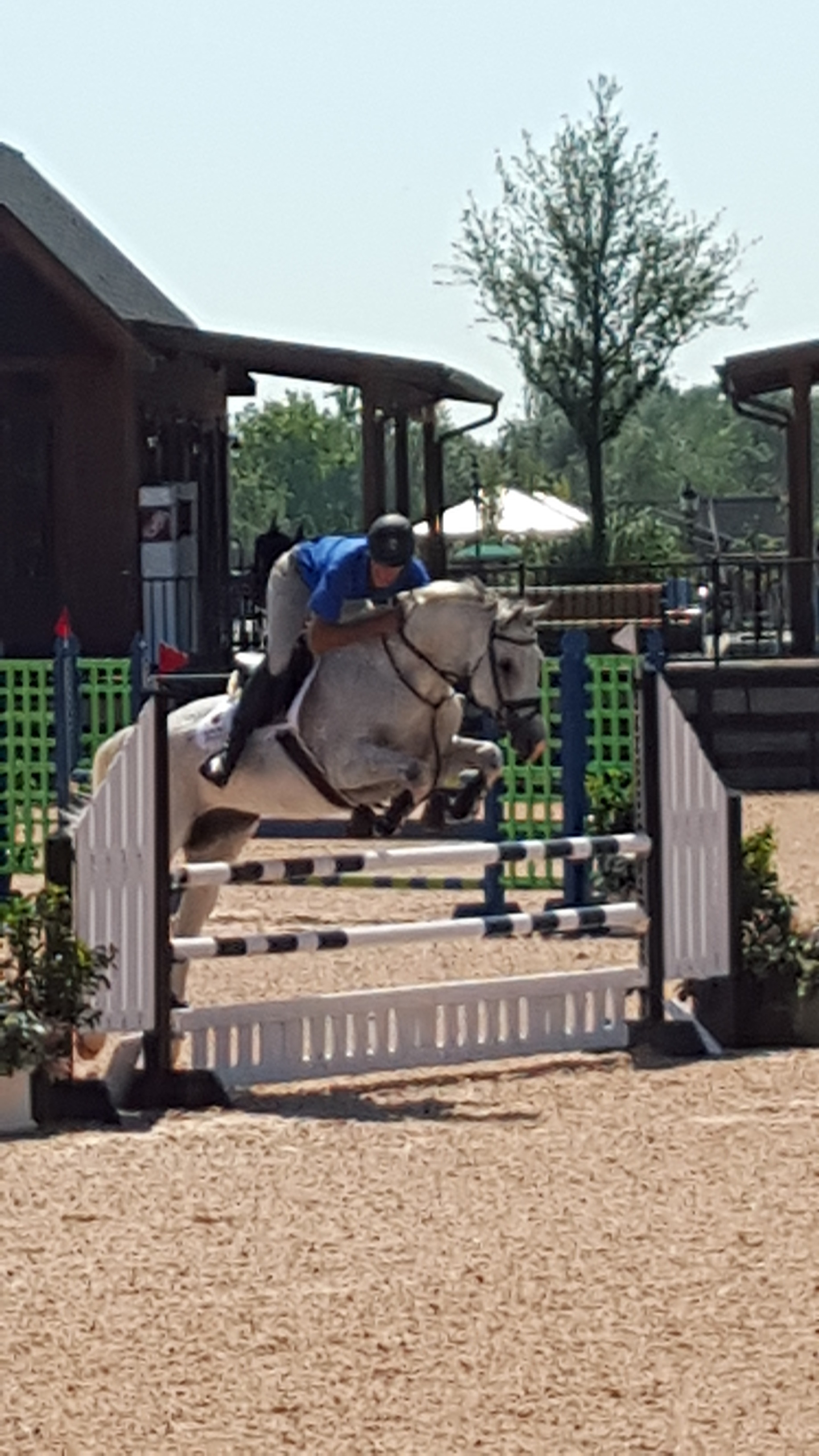 Prescott and Eric at Tryon International earning two blue ribbon rounds