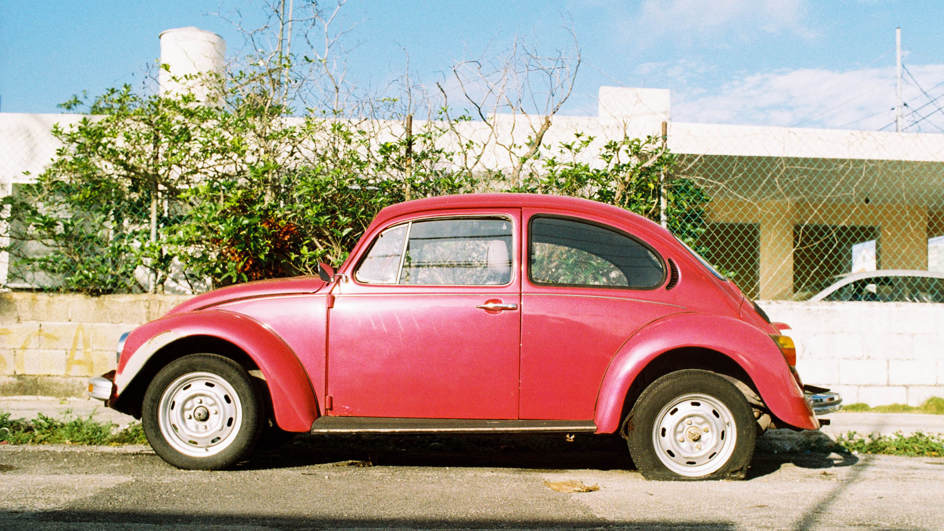 VW-5.jpg