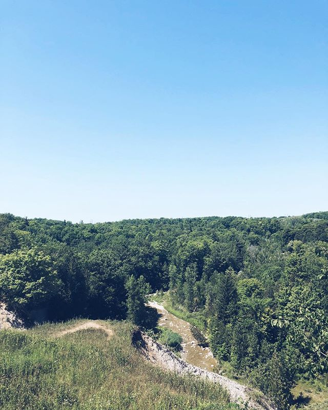 Went on a hike to Rouge National Urban Park with @parkbus, @mec, @pilotcoffee, and @ontarioparks! Great way to escape the city, this route is free all summer long so you can visit the park for yourself! Check out the full story, #linkinbio
