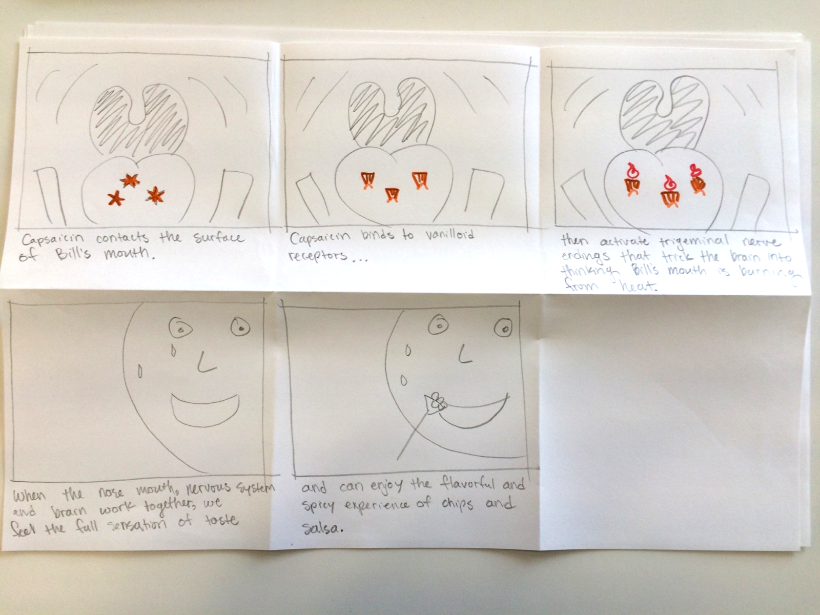 (Second Draft, Part 3)  I  n-depth storyboard illustrating capsaicin and its painful effect.