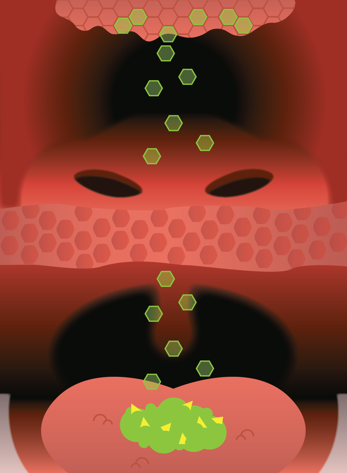 First attempt at illustrating how vapor particles move through the retro nasal canal into the olfactory cells. Vapor particles (the green hexagons) are moving upward from the food on the tongue,passing a pink membrane (halfway through the image), and then into the nasal passage and connecting with the olfactory cells at the top.