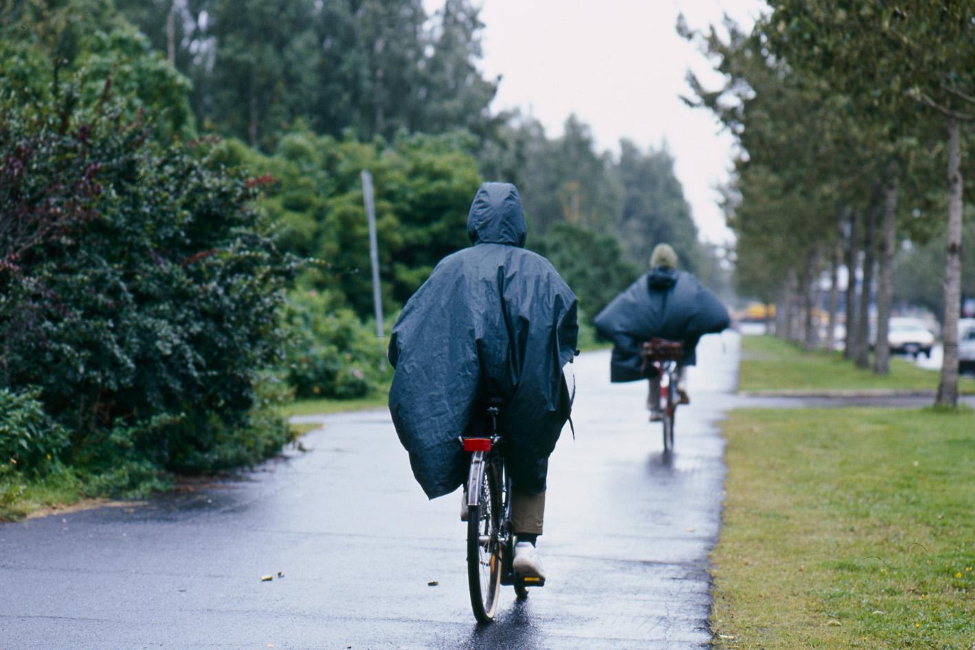 biker2.jpg