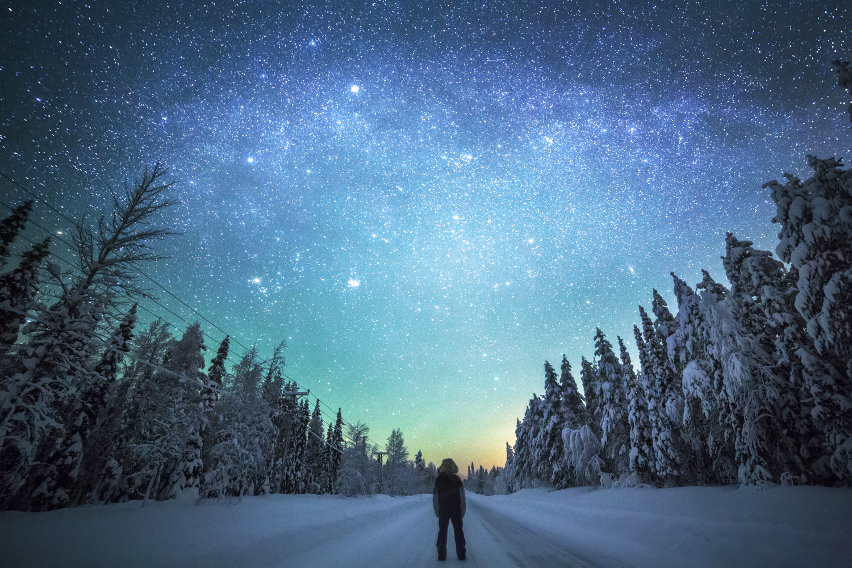 forest_lapland_winter-4.jpg