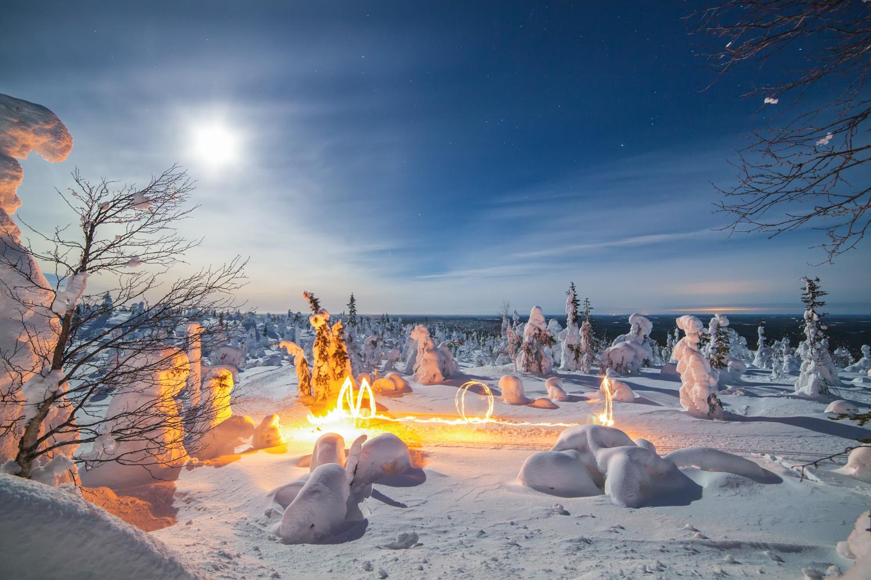forest_lapland_winter-9.jpg