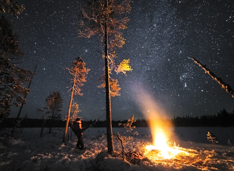 forest_lapland_winter-40.jpg