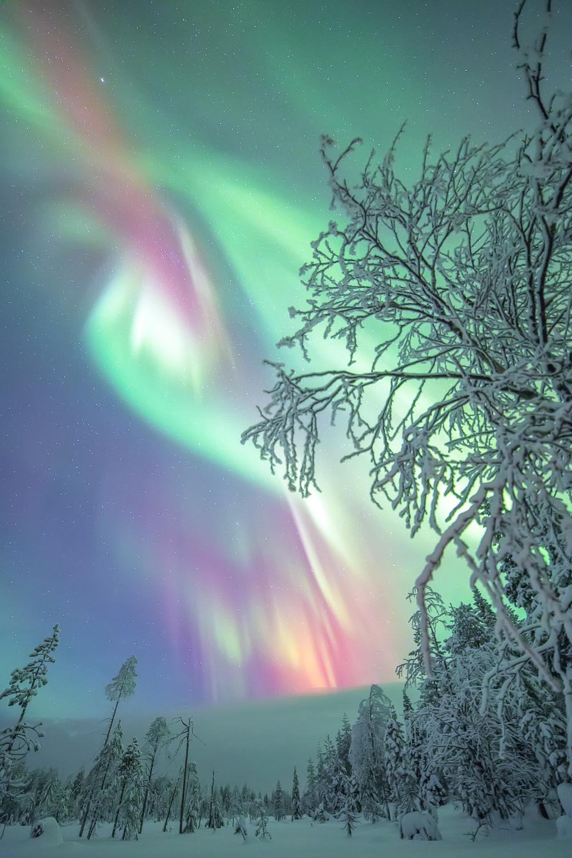 aurora_borealis_lapland-3.jpg
