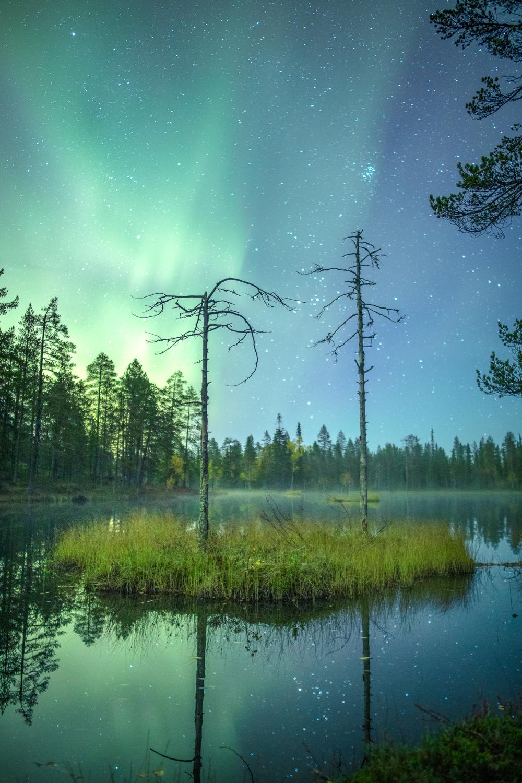 aurora_borealis_lapland-6.jpg