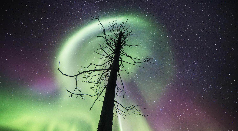 aurora_borealis_lapland-31.jpg