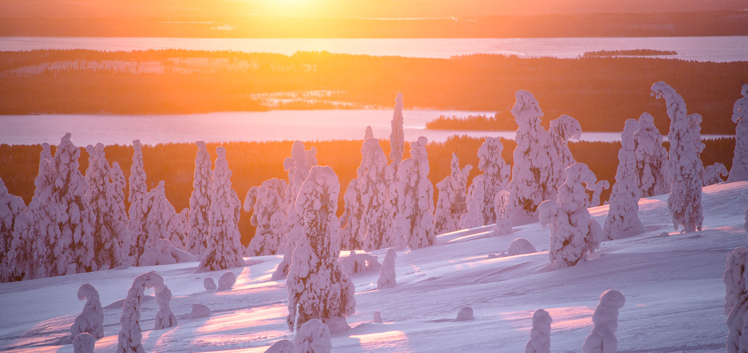 winter_day_lapland.jpg