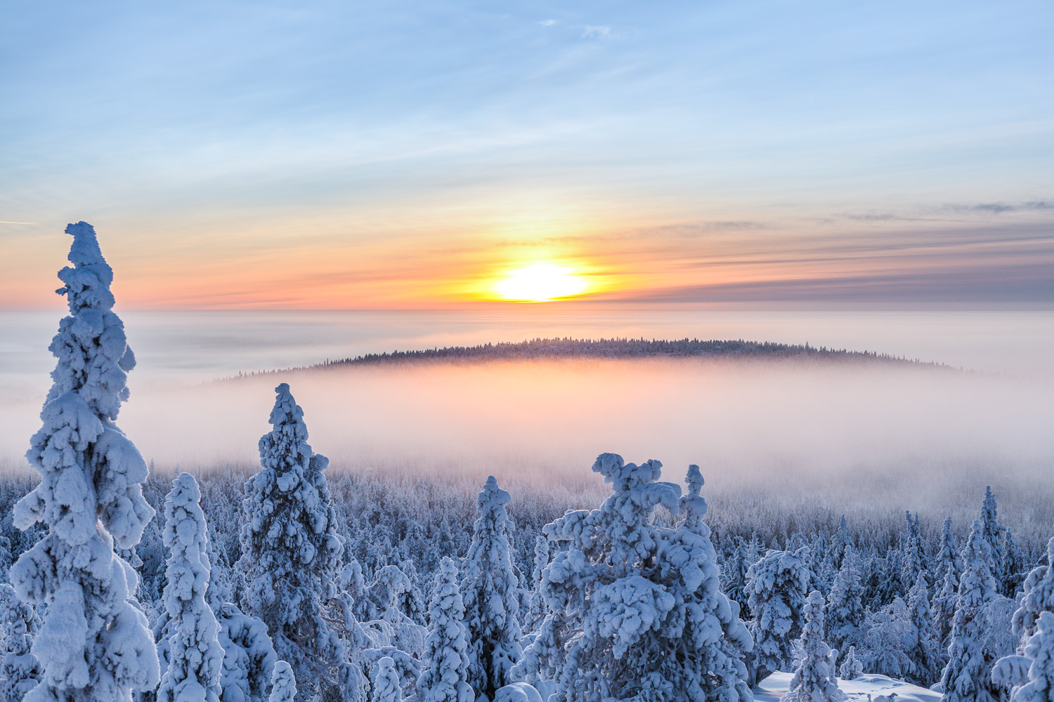 winter_day_lapland-5.jpg