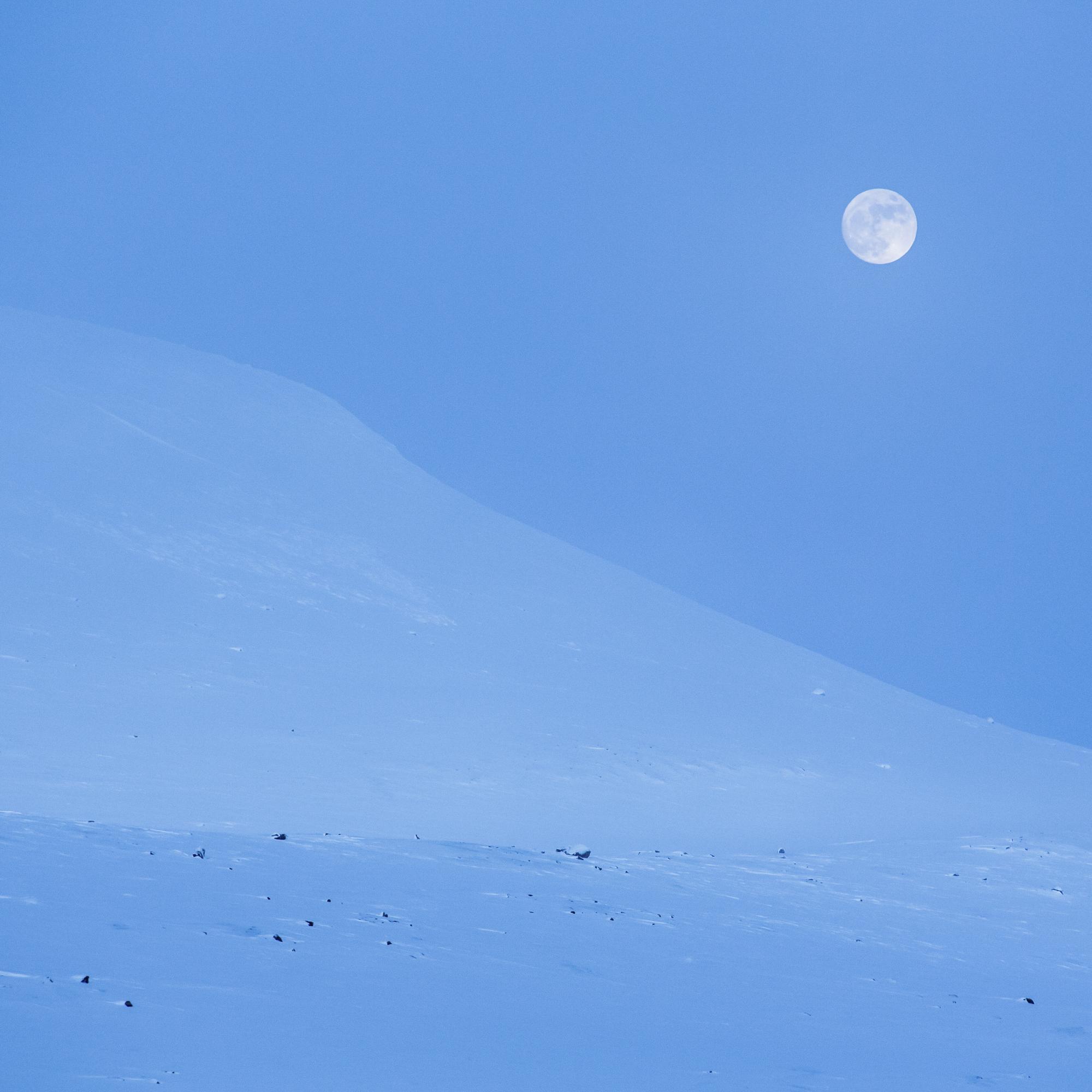winter_night_lapland-32.jpg
