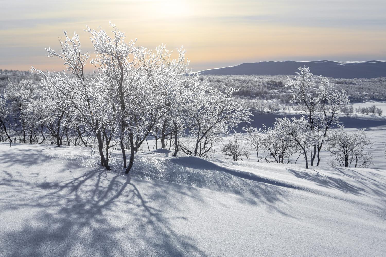 arctic_desert-41.jpg