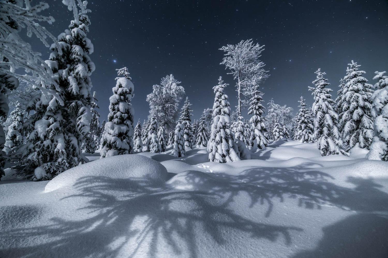 winter_night_lapland-19.jpg