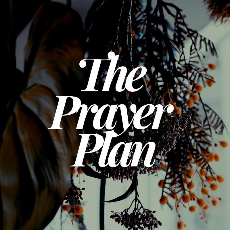 The+Prayer+Plan-2.jpg