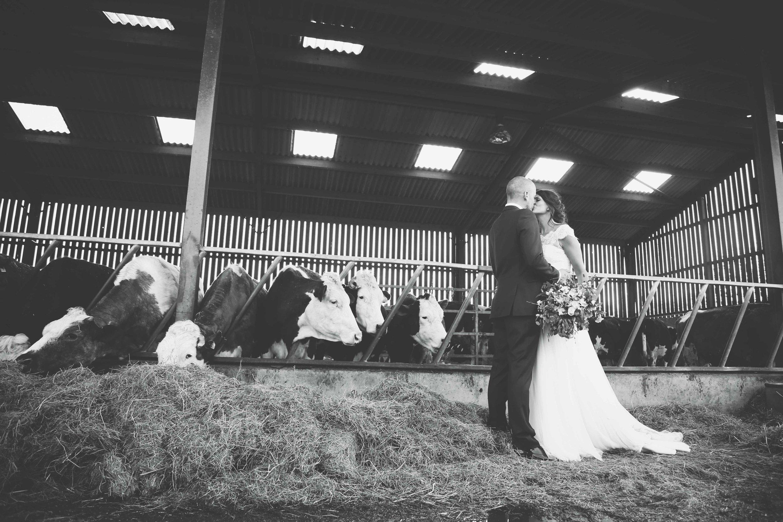 Heather Elizabeth Wedding Photography (153 of 168).jpg