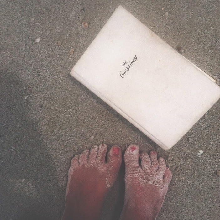 BOOK CLUB: THE GOLDFINCH