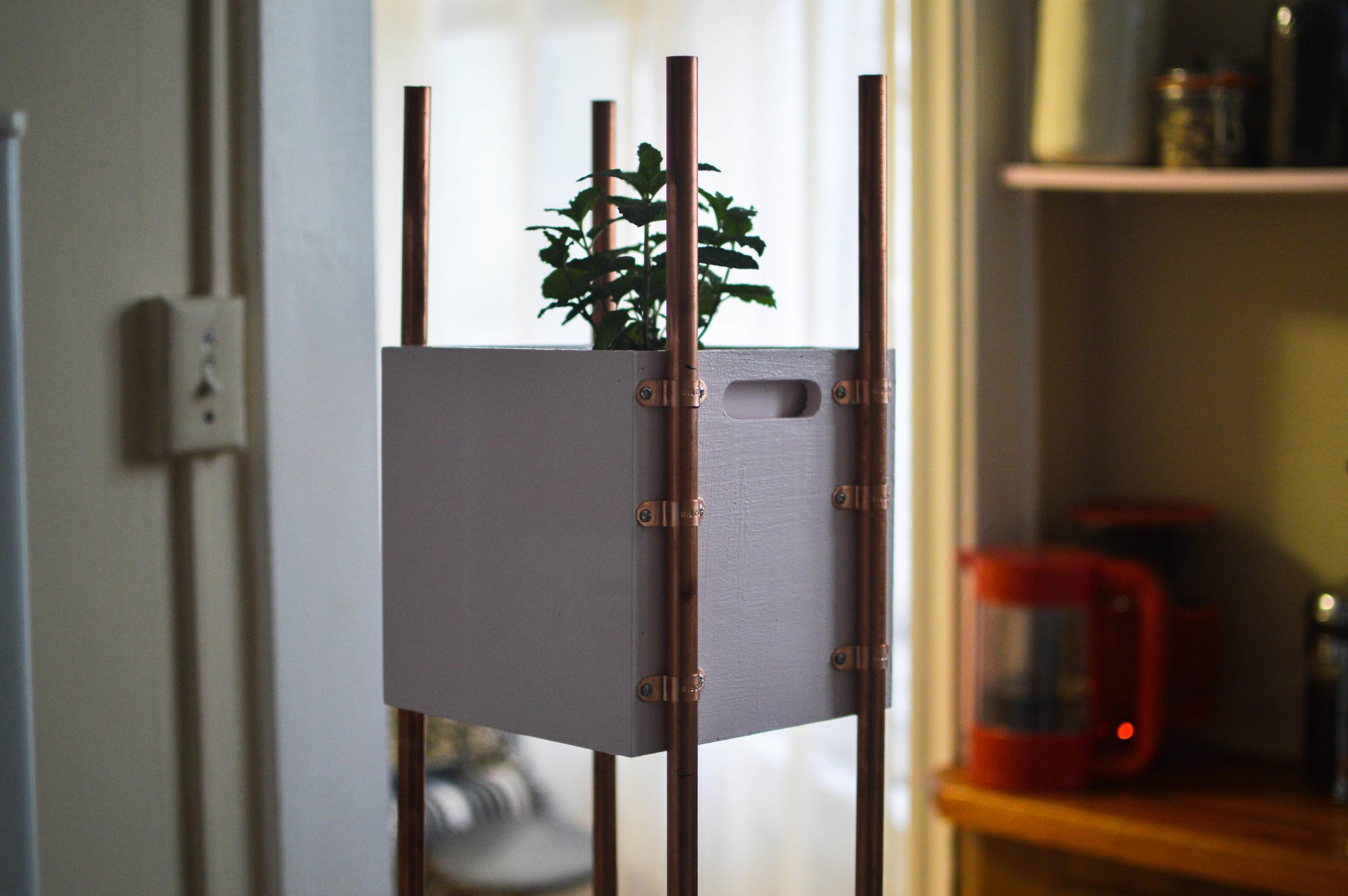 Cute Modern Planter DIY