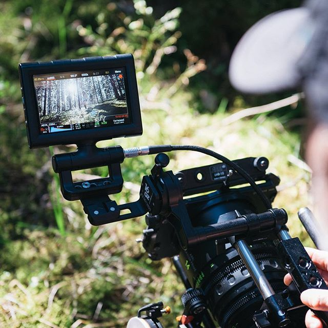 Back-lit magical forest on a MP 14mm at T1.3... #redweapon #arrilens #masterprimes #arripca #cameradept #cinematography #cinelens