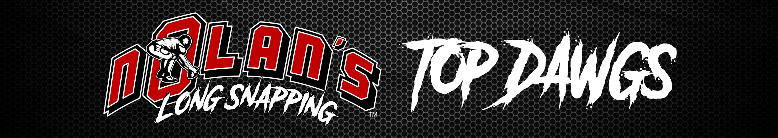 Nolan's-TOP-Dawgs-BANNER.png