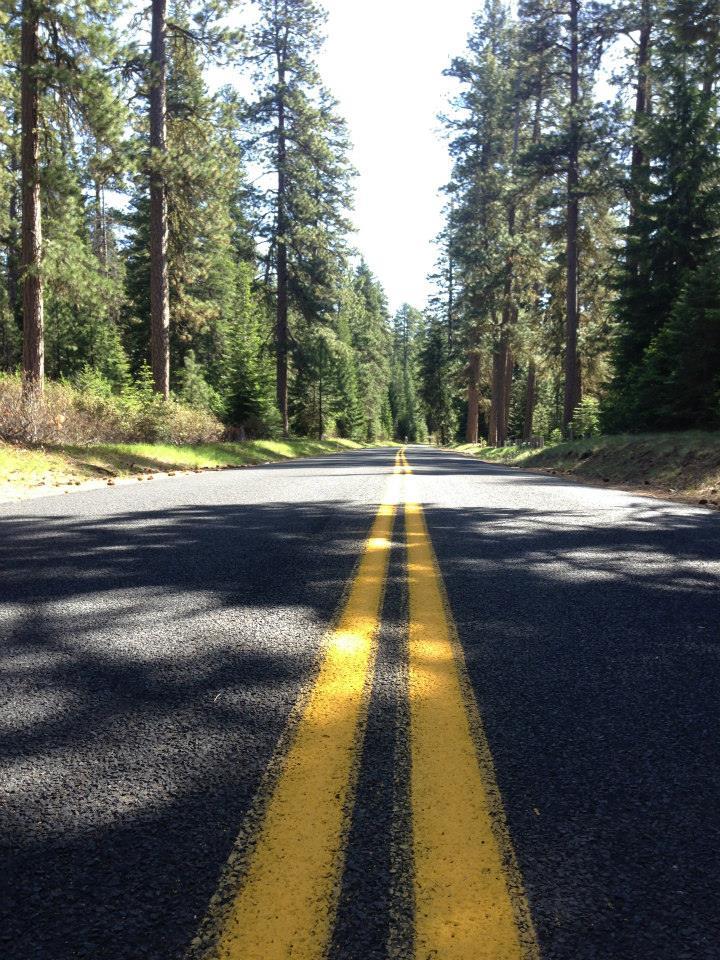 McKenzie-Pass-road.jpeg