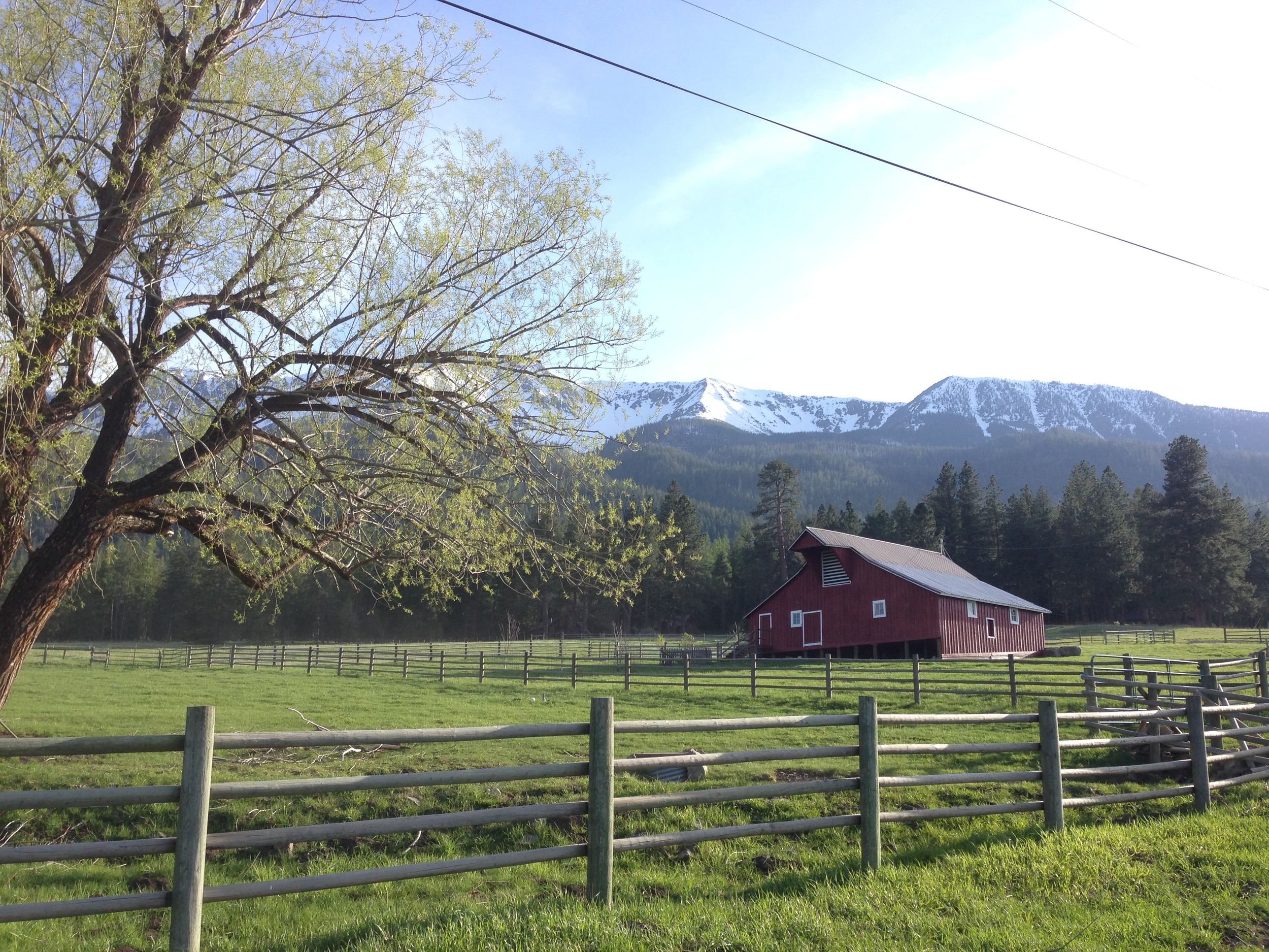 Cattle Ranch, Wallowa Mountains, Joseph, Oregon