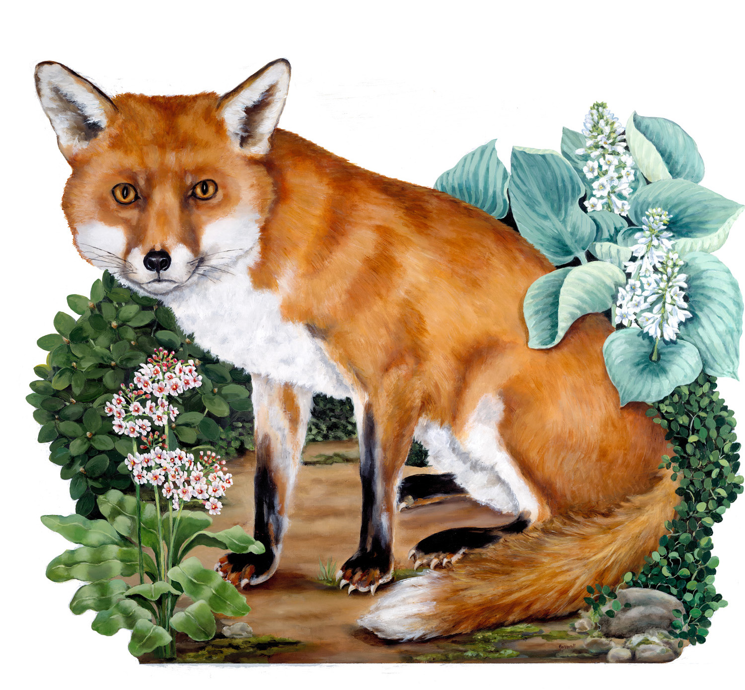 Fox Fire Screen