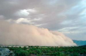Haboob blowing into Ahwatukee, Phoenix, Arizona on 22 August 2003 photo by    Junebug172  .