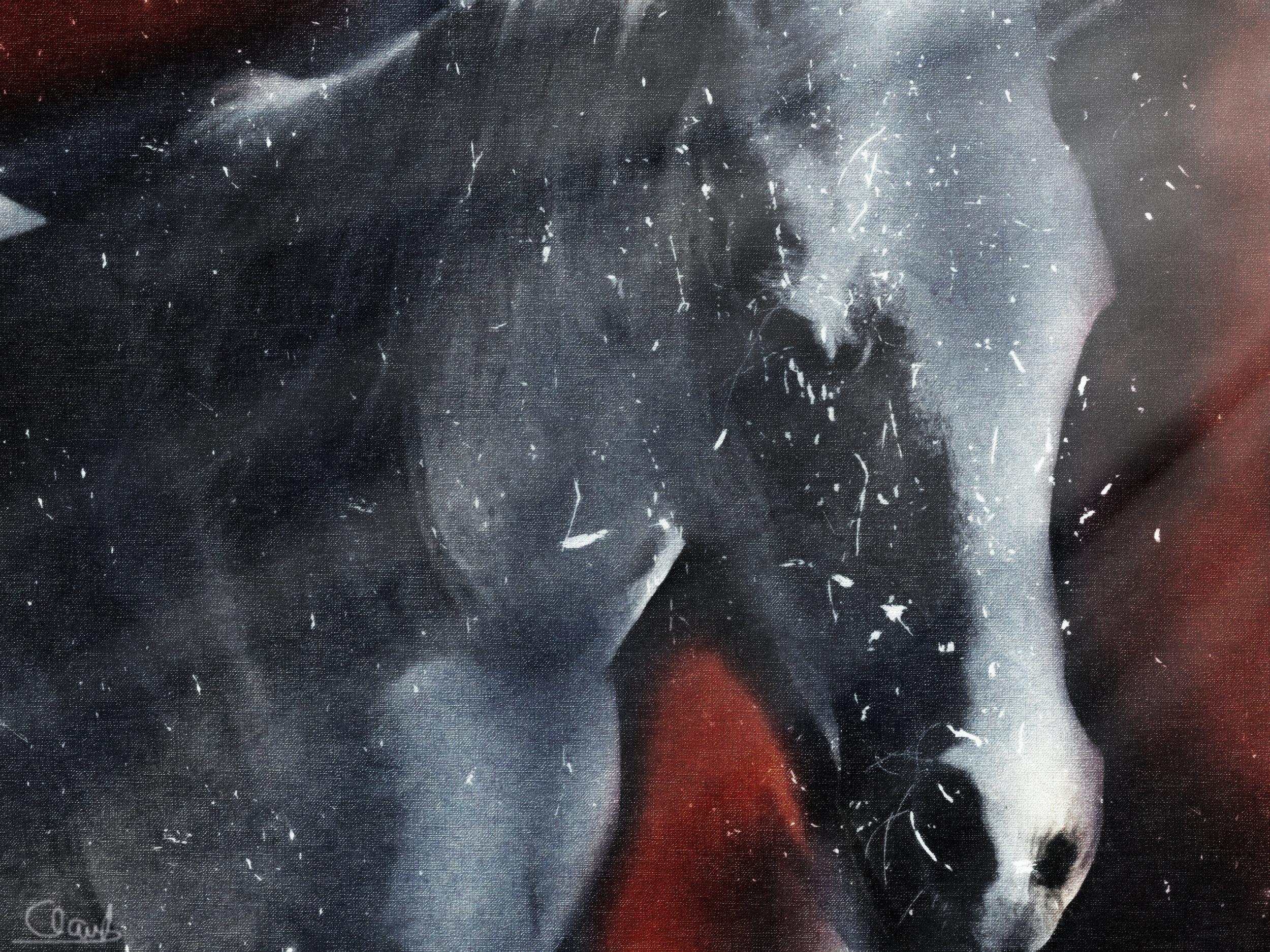 whitehorse2.jpg