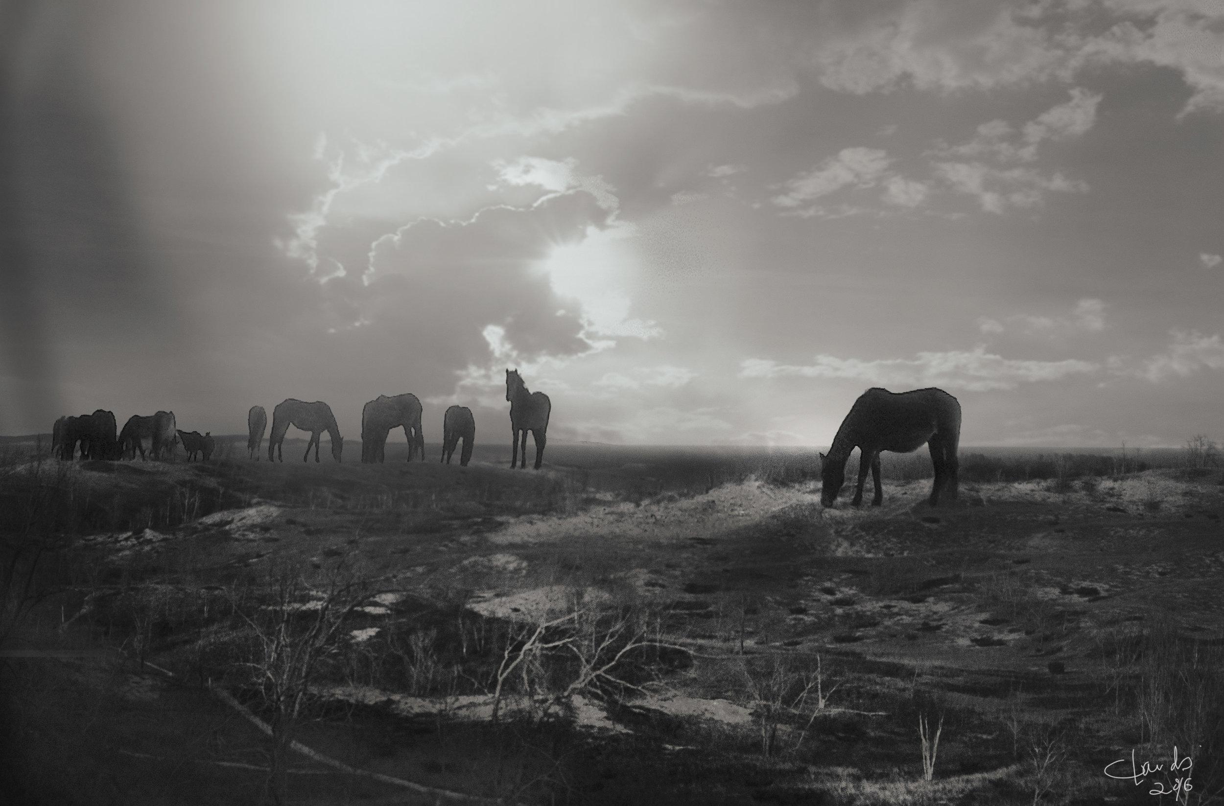 horsesinMichigane.jpg